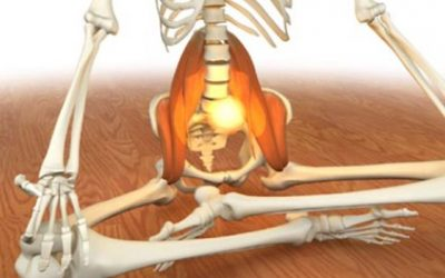 The psoas and the diaphragm – fighting the tiger or chilling out?